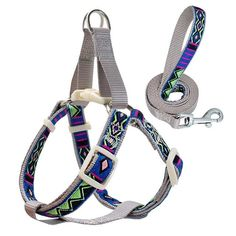 No-Pull Pet Dog Harness and Leash Set Nylon Printed Dog Harness Lead for Small Medium Dogs Puppy Tra Pet Dogs, Dogs And Puppies, Pets, Dog Harness, Dog Leash, How To Look Handsome, Medium Dogs, Dog Park, Green And Orange