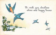 Vintage postcard with bluebirds