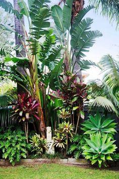 Garden Planning 10 Inspiring Tropical Landscaping Ideas That Can Be Made Easily Tropical Backyard Landscaping, Tropical Garden Design, Florida Landscaping, Garden Landscape Design, Landscape Plans, Front Yard Landscaping, Landscaping Ideas, Tropical Gardens, Backyard Ideas
