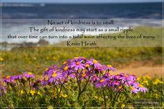 Photo by Coreen Kuhn Quote by Kevin Heath Location: Sandbaai