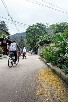 The car-free streets of Ilha Grande, Brazil | heneedsfood.com