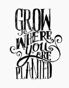 Grow Where You Are Planted by Matthew Taylor Wilson inspirational quote word art print motivational poster black white motivationmonday minimalist shabby chic fashion inspo typographic wall decor
