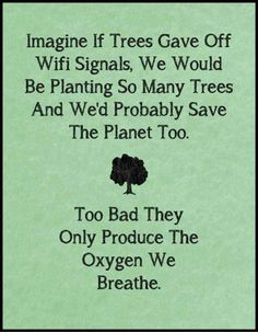imagine-if-trees-gave-off-wifi-signals-too-bad-they-only-produce-the-oxygen-we-breathe-e1377310577840.jpg 500×644 pixels
