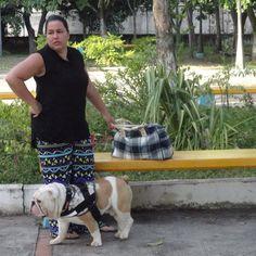 Parque Esequibo BARQUISIMETO-Lara VENEZUELA CAPO BULLDOG