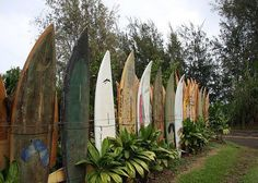 Old surfboards as fencing...