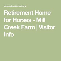 Retirement Home for Horses - Mill Creek Farm | Visitor Info