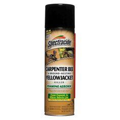 Spectracide Carpenter Bee & Ground-Nesting Yellowjacket Killer Foaming Aerosol - 16oz