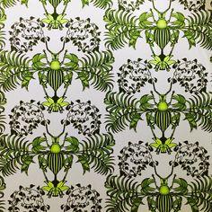 Dandy insect ! #wallpaper #papierpeint