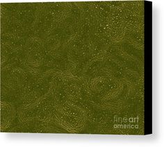 Tendrils Canvas Print by Onedayoneimage Photography.  All canvas prints are professionally printed, assembled, and shipped within 3 - 4 business days and delivered ready-to-hang on your wall. Choose from multiple print sizes, border colors, and canvas materials.