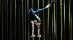 Elviszünk oda, ahol még nem jártál: A Cirque du Soleil Varekai-előadása, a színfalak mögött