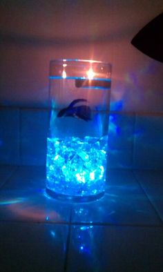 Center Piece for $12. The gems have an LED light under them and the change colors, beta fish, and a tealight candle!