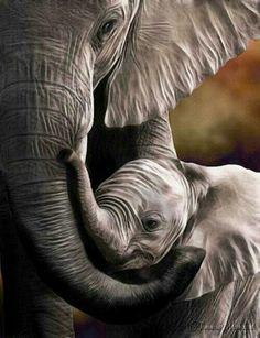 Mom and Dumbo