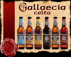 Gallaecia (Galicia, Spain)