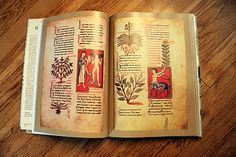 Medieval Herbal Manuscripts