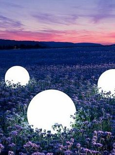 Giant Orb Light Shell 24in- How cool would this be in your garden or along your paths or around ponds?