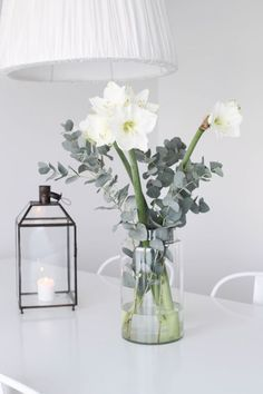 The Absolute Best (and Easiest) Plants to Grow Indoors This Fall - Make sure to keep your amaryllis house plant situated close to a window to give it ample light to g - Easy Plants To Grow, Growing Plants Indoors, White Flowers, Beautiful Flowers, Flower Decorations, Table Decorations, Decoration Entree, Deco Nature, Deco Floral
