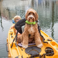 Floating away: Buggy and Reagan keep safe with lifejackets on their kayak...