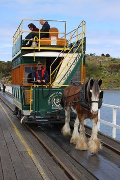 Granite Island Horse Tram by Stuart Daddow on 500px