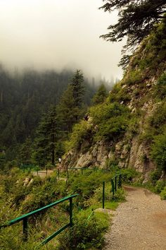 Beautiful View of Ayubia National Park Murree  Pakistan