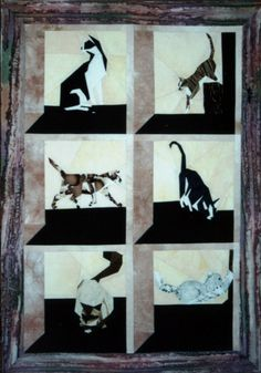 silver linings quilting pattern cats in the attic