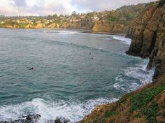 La Jolla, San Diego California was one of the most beautiful places I have ever seen!
