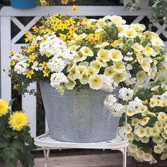 Love the contrast of the metal container with the white and yellow flowers