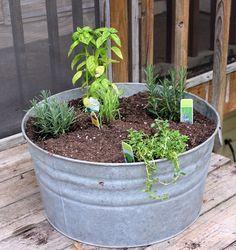 $5 garage sale washtub turned herb garden