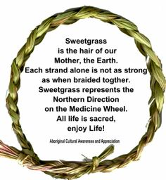 Sweet grass is the hair of our mother, the Earth. Each strand alone is not as strong as when braided together. Sweet grass represents the Northern Direction on the Medicine Wheel. All life is sacred. Native American Spirituality, Native American Wisdom, Native American History, American Indians, Native American Prayers, Native American Crafts, Native American Tribes, American Life, American Art