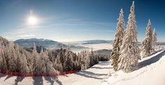 Winter in Postavaru, January Bucegi and Piatra Craiului mountains can be seen from here on a sunny day. Buy this image. Holiday Activities, Trekking, Sunny Days, Winter Wonderland, Landscape Photography, Safari, Places To Visit, Adventure, Mountains