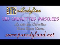 Le mix des Crevettes - Les crevettes musclées