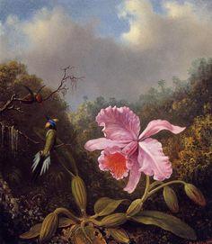 'la lucha `hummingbirds` con rosa orquídea', óleo sobre lienzo de Martin Johnson Heade (1819-1904, United States)