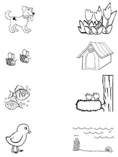 Are You My Mother Worksheet for mom/baby animal matching