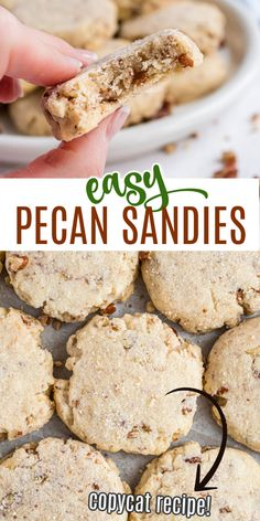 Light and crumbly Pecan Sandies may look simple but don't let that fool you; these easy-to-make cookies are filled with irresistible buttery pecan flavor. You won't be able to eat just one! Pecan Sandie Cookie Recipe, Pecan Sandies Cookies, Swig Sugar Cookies, Pecan Cookie Recipes, Sandies Recipe, Seed Cookies, Shortbread Cookies, Just Desserts, Delicious Desserts