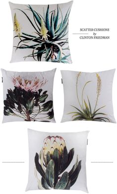 Botanical Weylandts cushions nice for pool Sofa Pillows, Throw Pillows, Africa Decor, South African Design, African Interior, Weylandts, Botanical Decor, Scatter Cushions, Soft Furnishings