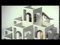 hr Katzen - TV Kult des hr Fernsehens (27:48)