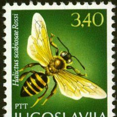 We LOVE Bee postage Stamps