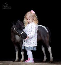 American Miniature Horse mare Little Star