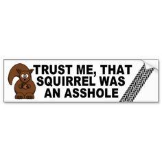 Funny road kill bumper sticker #squirrel