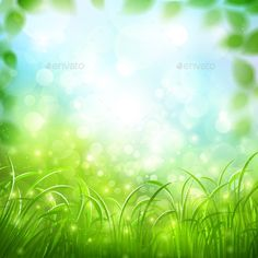 Buy Natural Background by -Baks- on GraphicRiver. Natural background with green grass and bright glare of sunlight. Free Vector Backgrounds, Green Backgrounds, Free Vector Images, Vector Free, Green Grass Background, Natural Background, Desktop Background Pictures, Blurred Background, Photo Editor Free