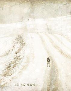 all who wander- Jamie Heiden