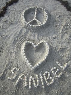sanibel love love this place. If it's not NYC it's going to be sanibel Florida Girl, West Florida, Florida Usa, Sanibel Beach, Florida Beaches, Sanibel Florida, Captiva Island, Fort Myers Beach, Sunshine State