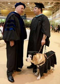 Kirsch, earned an honorary masters degree because he actually sat through all of his owners classes at John Hopkins University. Johns Hopkins University, Facebook Humor, Service Dogs, College Life, Feel Good, Best Friends, Masters, People, Inspirational
