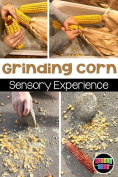 Preschoolers and pre-k students can discover how corn meal was made by grinding corn with a rock. This Thanksgiving activity for toddlers incorporates fine motor skills and gross motor skills. Click to learn more about this Thanksgiving theme preschool activity. Harvest Activities, Fall Preschool Activities, Preschool Literacy, In Kindergarten, Toddler Activities, Learning Activities, Preschool Art, Fun Learning, Teaching Resources