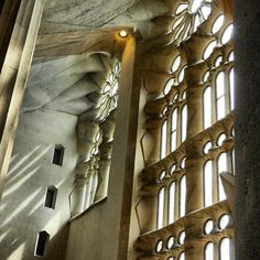 The magnificent windows