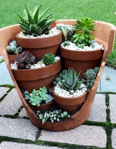 creative garden ideas and landscaping tips Thanks for watching this video! We would like to introduce garden design ideas diy garden, pots for plants, Diy c. Succulent Planter Diy, Succulent Gardening, Cacti And Succulents, Container Gardening, Planter Ideas, Organic Gardening, Succulent Ideas, Succulents In Containers, Small Garden Ideas With Succulents