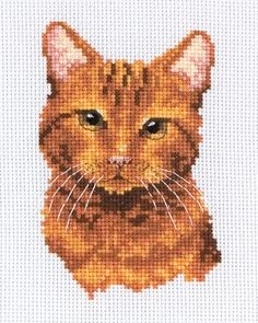 Tabby Cat - Cross Stitch Kit from Anchor Cat Cross Stitches, Cross Stitch Needles, Beaded Cross Stitch, Cross Stitch Kits, Cross Stitch Charts, Cross Stitching, Cross Stitch Embroidery, Cross Stitch Patterns, Cross Stitch Alphabet