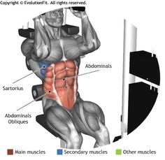 ABDOMINALS - AB CRUNCH MACHINE