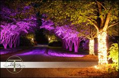 Special lighting for evening elegance at this rustic outdoor wedding at Hawkesdene House