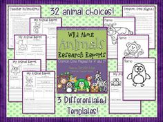 Love this animal report template pack. Makes it easy to differentiate for different levels of learners. Perfect for kindergarten and 1st grade.