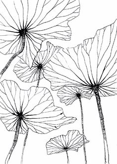 25 ideas flowers drawing doodles inspiration zentangle patterns drawing flowers is part of pencil-drawings - pencil-drawings Art Floral, Floral Design, Silk Painting, Painting & Drawing, Wall Drawing, Doodle Inspiration, Zentangle Patterns, Doodle Patterns, Floral Patterns